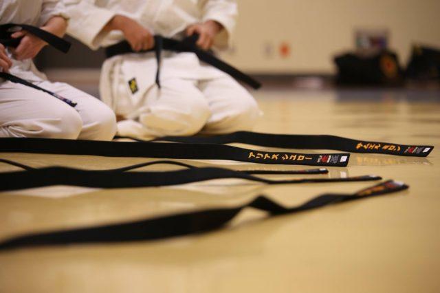 Japanischer Kampfsport